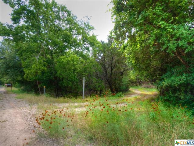 4543 Sir Arthur Way, Canyon Lake, TX 78133 (MLS #385219) :: Berkshire Hathaway HomeServices Don Johnson, REALTORS®