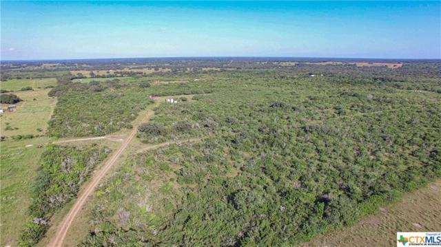 000 Church Road, Goliad, TX 77963 (MLS #385234) :: The Zaplac Group