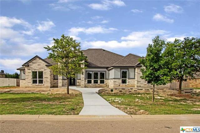 12033 Lago Terra, Belton, TX 76540 (MLS #385285) :: The Real Estate Home Team