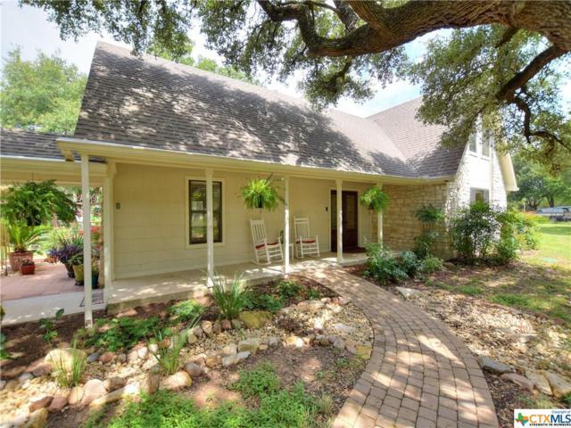 20128 W Lake Parkway, Georgetown, TX 78628 (MLS #385302) :: RE/MAX Land & Homes