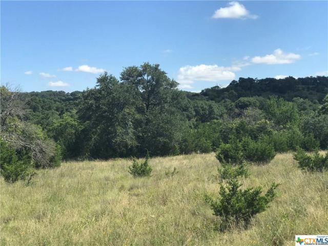 TBD 12.9 Acres Rr 1623, Blanco, TX 78606 (#385313) :: Realty Executives - Town & Country