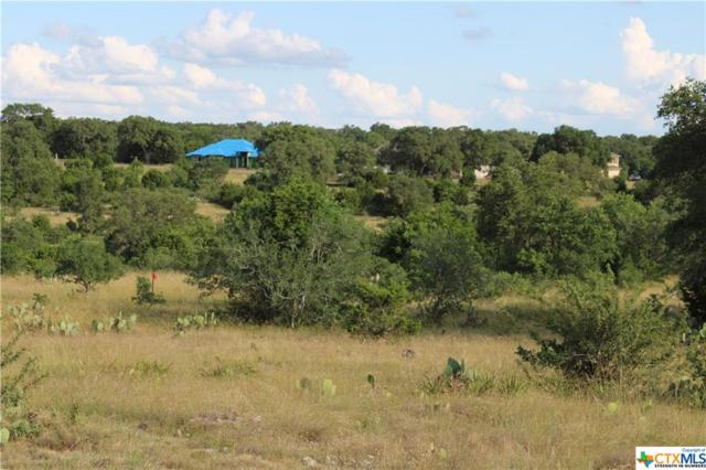 1356 Bordeaux Lane, New Braunfels, TX 78132 (#385388) :: Realty Executives - Town & Country