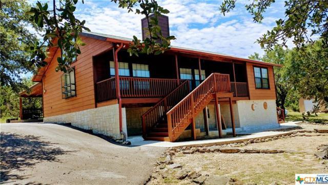 131 Appaloosa Drive, Fischer, TX 78623 (MLS #385476) :: RE/MAX Land & Homes