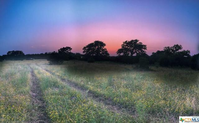 LOT 20 Sabinas Creek Ranch Rd, Boerne, TX 78006 (MLS #385513) :: The Graham Team