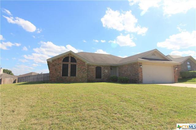 3804 Tiger Drive, Killeen, TX 76549 (MLS #385533) :: RE/MAX Land & Homes
