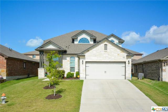 5126 Dauphin Drive, Belton, TX 76513 (MLS #385563) :: Erin Caraway Group