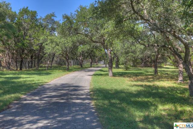 10100 Fm 32, Fischer, TX 78623 (MLS #385577) :: Magnolia Realty