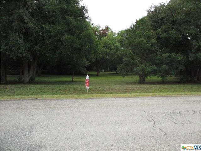 Goliad, TX 77963 :: RE/MAX Land & Homes