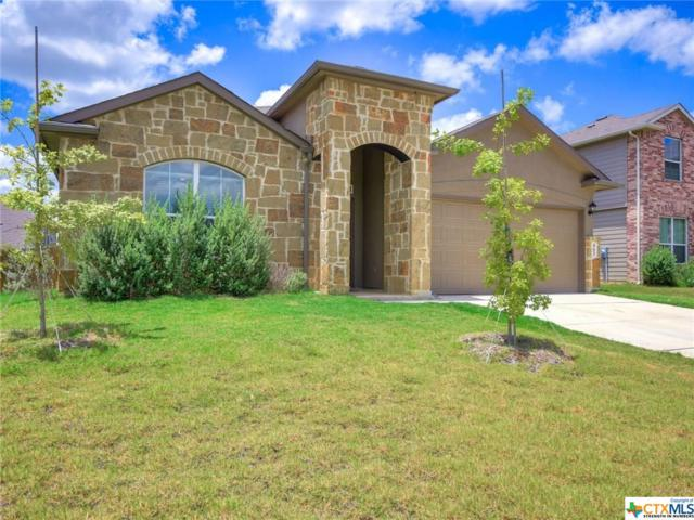 463 Willow Arch, New Braunfels, TX 78130 (MLS #385608) :: Magnolia Realty