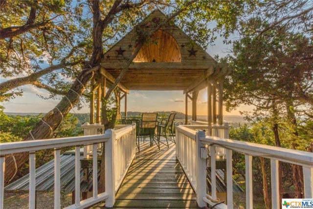 573 Mountain Oaks Drive, Canyon Lake, TX 78133 (#385638) :: Realty Executives - Town & Country