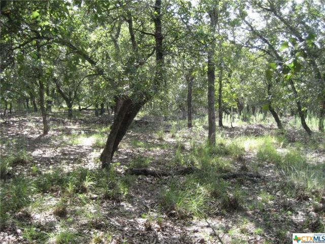 TBT Fm 1117, Seguin, TX 78155 (MLS #385657) :: Magnolia Realty