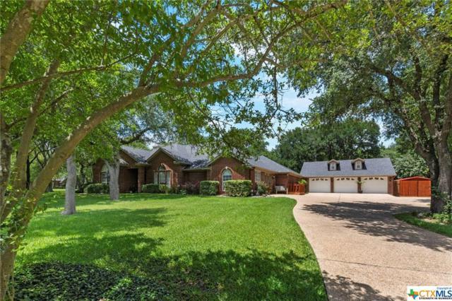 517 Riverwood Drive, Belton, TX 76513 (MLS #385762) :: Brautigan Realty
