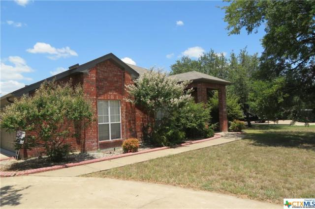124 Wyatt Earp Loop, OTHER, TX 76559 (MLS #386087) :: Marilyn Joyce | All City Real Estate Ltd.