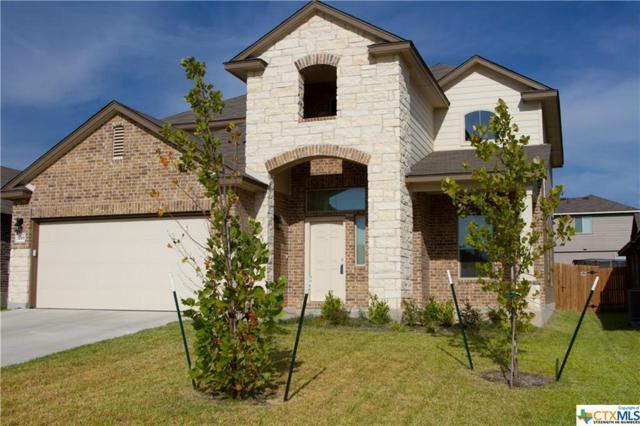 1219 Iron Glen Drive, Temple, TX 76502 (MLS #386131) :: Marilyn Joyce | All City Real Estate Ltd.