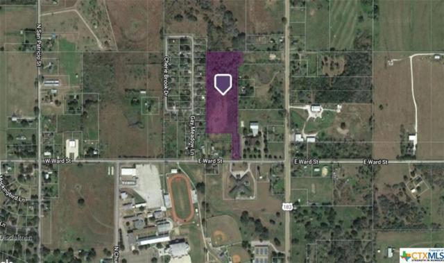 000 E Ward, Goliad, TX 77963 (MLS #386134) :: RE/MAX Land & Homes