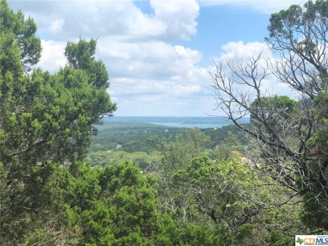 500 Naked Indian Trail, New Braunfels, TX 78132 (MLS #386150) :: Vista Real Estate