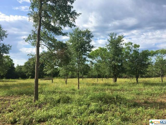 321 Burdette Wells Road, Lockhart, TX 78644 (MLS #386236) :: Vista Real Estate