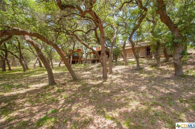 219 Lois Lane, Canyon Lake, TX 78133 (MLS #386265) :: Kopecky Group at RE/MAX Land & Homes