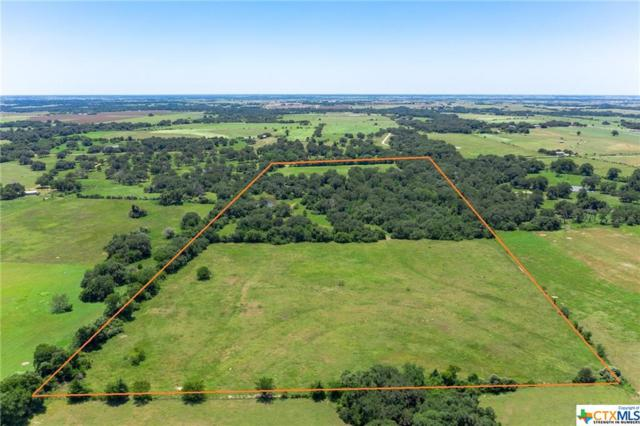 000 W County Line Road, Flatonia, TX 78941 (MLS #386327) :: Vista Real Estate