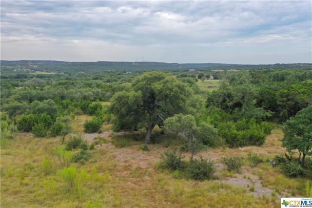 120 Sendera Way, Canyon Lake, TX 78133 (MLS #386460) :: Vista Real Estate