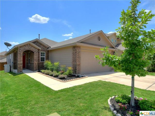 122 Tallow Trail, San Marcos, TX 78666 (#386508) :: Realty Executives - Town & Country