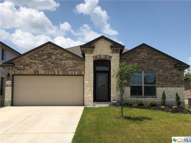 5338 Cicero Drive, Belton, TX 76513 (MLS #386568) :: Erin Caraway Group