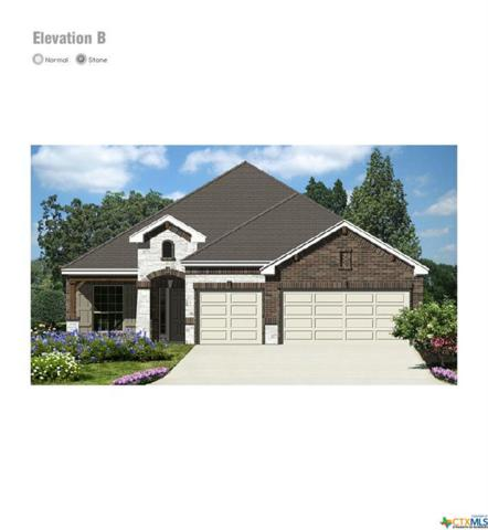 3617 Black Cloud Dr, New Braunfels, TX 78130 (#386734) :: Realty Executives - Town & Country