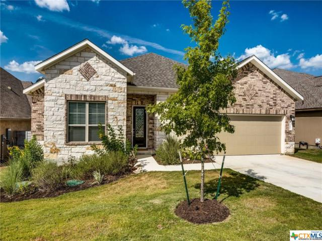 1181 Nutmeg Trail, New Braunfels, TX 78132 (#386866) :: Realty Executives - Town & Country