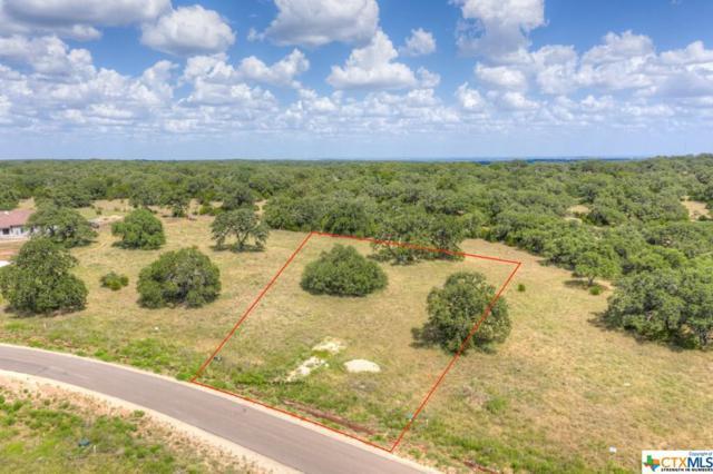 1182 Trotter Lane, New Braunfels, TX 78132 (MLS #386922) :: Vista Real Estate