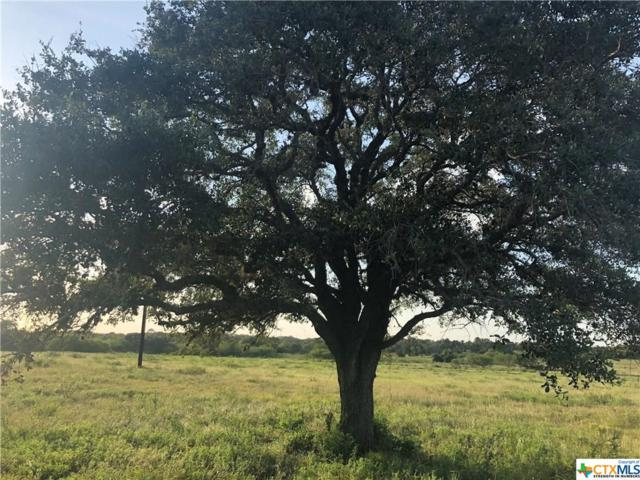 8040 W Fm 1447 Road, Yoakum, TX 77995 (MLS #386983) :: RE/MAX Land & Homes