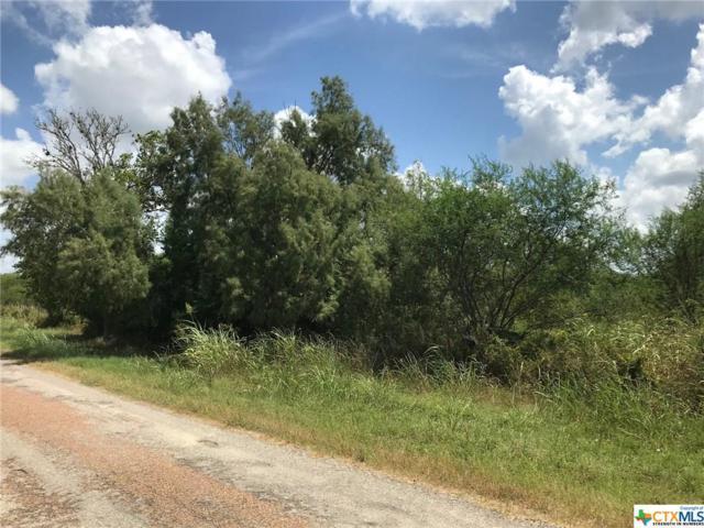 6785 Old Yoakum Road, Cuero, TX 77954 (MLS #387019) :: RE/MAX Land & Homes