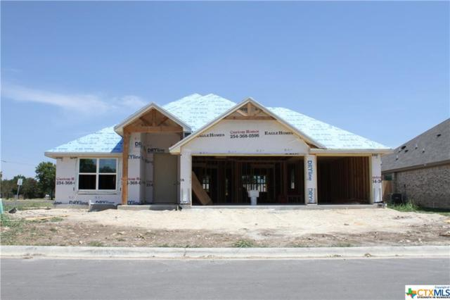 7414 Diamond Dove Drive, Temple, TX 76502 (#387071) :: Realty Executives - Town & Country