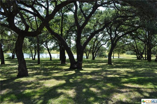 3519 Grande Drive, La Grange, TX 78945 (MLS #387073) :: The i35 Group