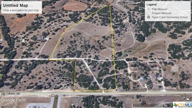 26 Acres Big Divide Road, Copperas Cove, TX 76522 (MLS #387082) :: The Graham Team