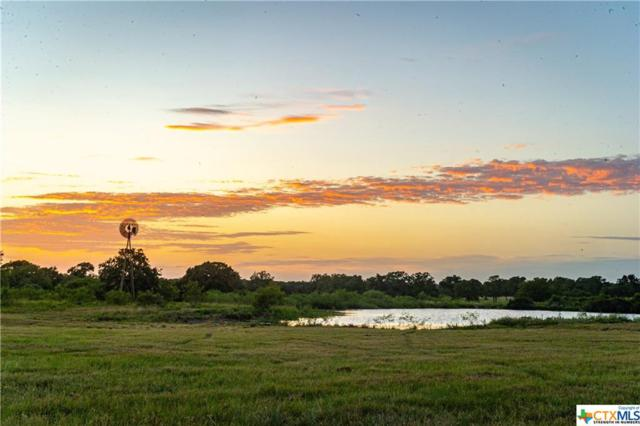2595 Burke Road, Flatonia, TX 78941 (MLS #387117) :: Vista Real Estate