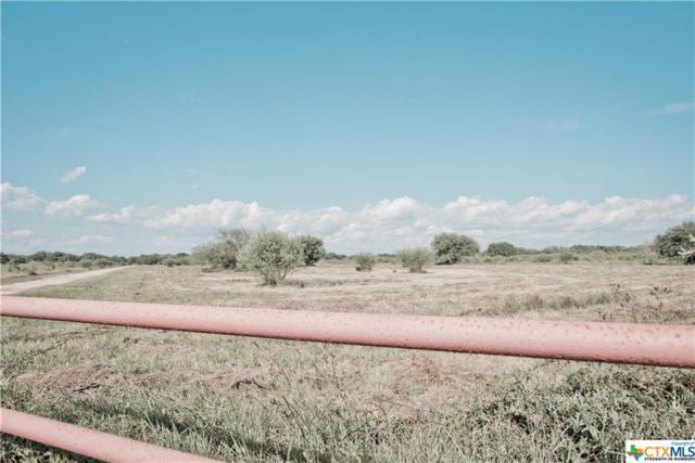 1913 Fm 234, El Toro, TX 77957 (MLS #387211) :: RE/MAX Land & Homes