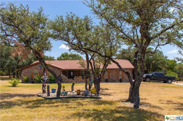 806 County Road 4756 Road, Kempner, TX 76539 (MLS #387229) :: Marilyn Joyce | All City Real Estate Ltd.