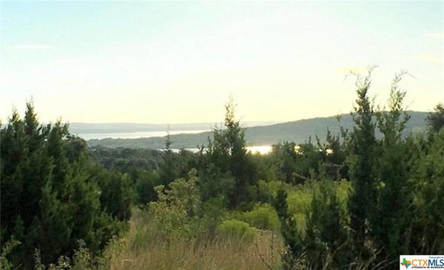 224 San Salvadore, Canyon Lake, TX 78133 (MLS #387245) :: The Barrientos Group