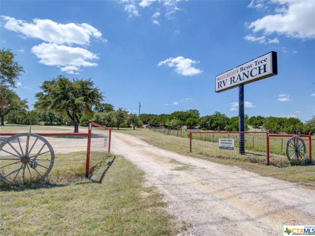 10280 Highway 281, Lampasas, TX 76550 (MLS #387295) :: The Graham Team