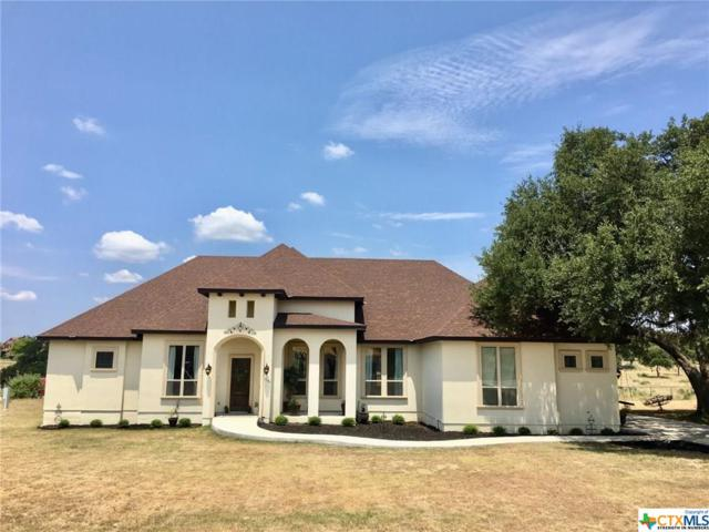 1143 Sapling Spring, New Braunfels, TX 78132 (#387518) :: Realty Executives - Town & Country