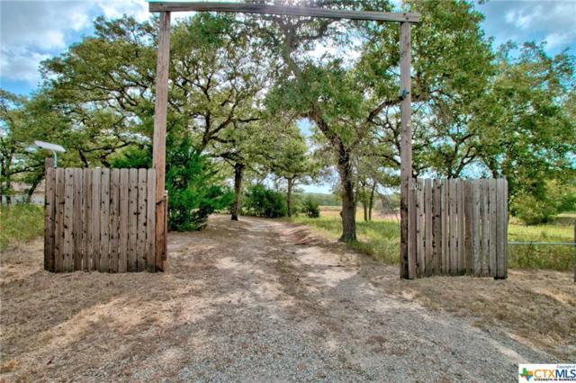201 Redberry Road, Seguin, TX 78155 (MLS #387529) :: Vista Real Estate