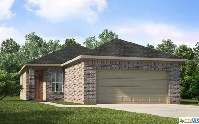 155 Laurel Grace, New Braunfels, TX 78130 (#387609) :: Realty Executives - Town & Country