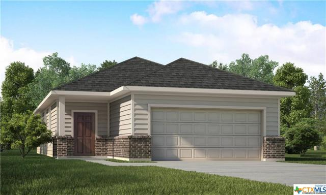 159 Laurel Grace, New Braunfels, TX 78130 (#387612) :: Realty Executives - Town & Country