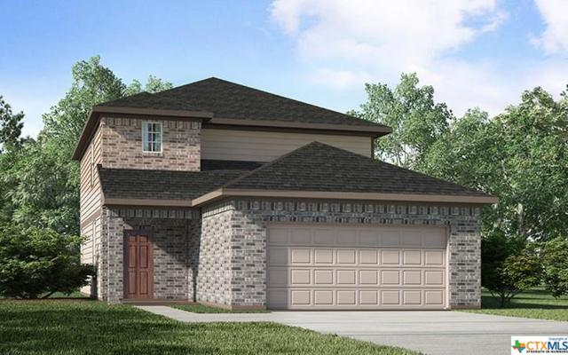 163 Laurel Grace, New Braunfels, TX 78130 (#387616) :: Realty Executives - Town & Country