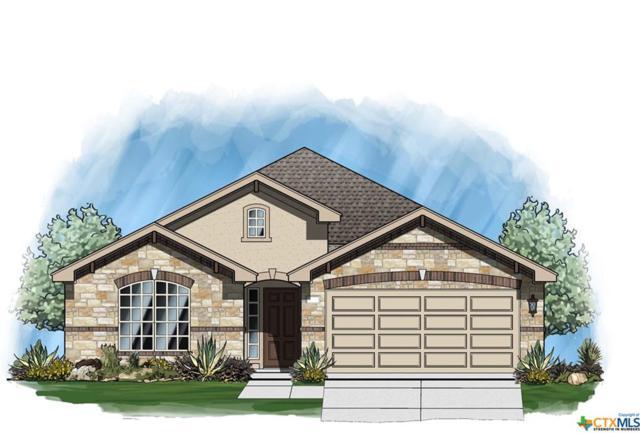208 Durata, San Marcos, TX 78666 (MLS #387735) :: Vista Real Estate