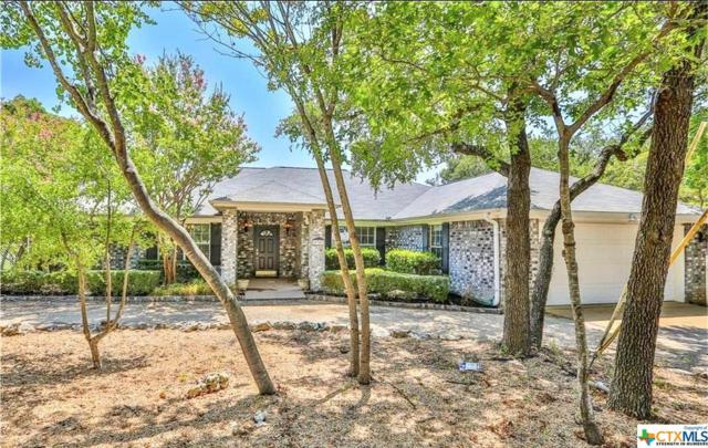 5347 Denmans Loop, Belton, TX 76513 (MLS #387740) :: Erin Caraway Group