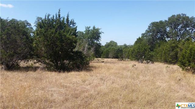 tbd Steeplebrook Drive, San Marcos, TX 78666 (MLS #387741) :: Vista Real Estate