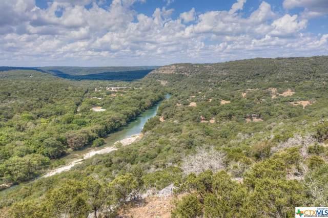 128 Ash Juniper Drive, New Braunfels, TX 78132 (MLS #390011) :: Vista Real Estate