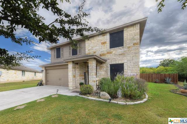 203 Creekview Way, New Braunfels, TX 78130 (MLS #390026) :: The Graham Team