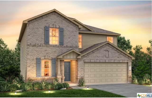 424 Ibis Falls Loop, Jarrell, TX 76537 (MLS #390061) :: Marilyn Joyce | All City Real Estate Ltd.